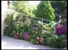 GARDEN CENTER JARDECO, ARONA, TENERIFE SUR, ISLAS CANARIAS, TENERIFFA, Тенерифе, Garden Center, Garden Construction and Design, Outdoor and Indoor Plants, artificial grass suppliers, decoration,