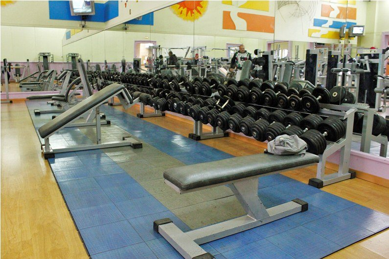 Gimnasio en forma fitness gimnasios banco para for Gimnasio gimnasio